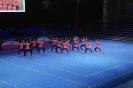 SM Team-Aerobic 2014